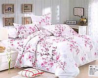 Комплект постельного белья Casa New Fashion Евро 230х250 см Ранфорс CasaNewFashion E-403 (E-403)