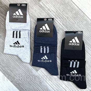 Шкарпетки чоловічі демісезонні х/б спортивні Adidas, Athletic Sports, середні, асорті з сірим, 12558
