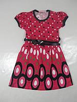 Нарядное платье  для девочек, размеры 98,110,116, CP-809