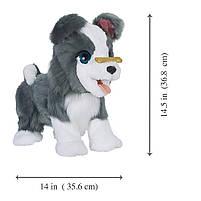 Интерактивный щенок Рикки Hasbro FurReal Friends Ricky Pet (E0384), фото 4