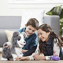 Интерактивный щенок Рикки Hasbro FurReal Friends Ricky Pet (E0384), фото 5