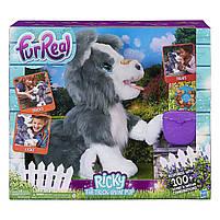 Интерактивный щенок Рикки Hasbro FurReal Friends Ricky Pet (E0384), фото 2