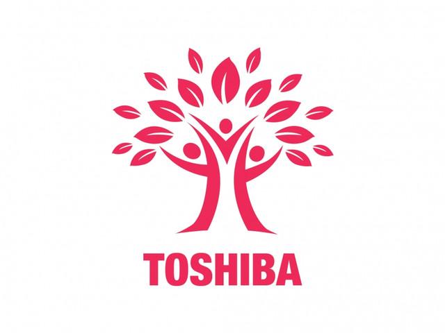 Кондиционеры Toshiba.