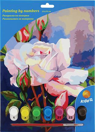 Раскраски по номерам Kite 7 цветов 22х29 розы, фото 2