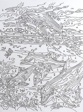 Раскраски по номерам Kite 7 цветов 22х29 дельфины, фото 2