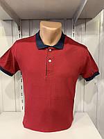 Футболка мужская COLORHAKAN поло комбинированная, размеры M - 3XL,005 \ купить футболку мужскую оптом