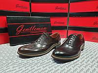 Класичні шкіряні чоловічі туфлі (оксфорд) Gentleman