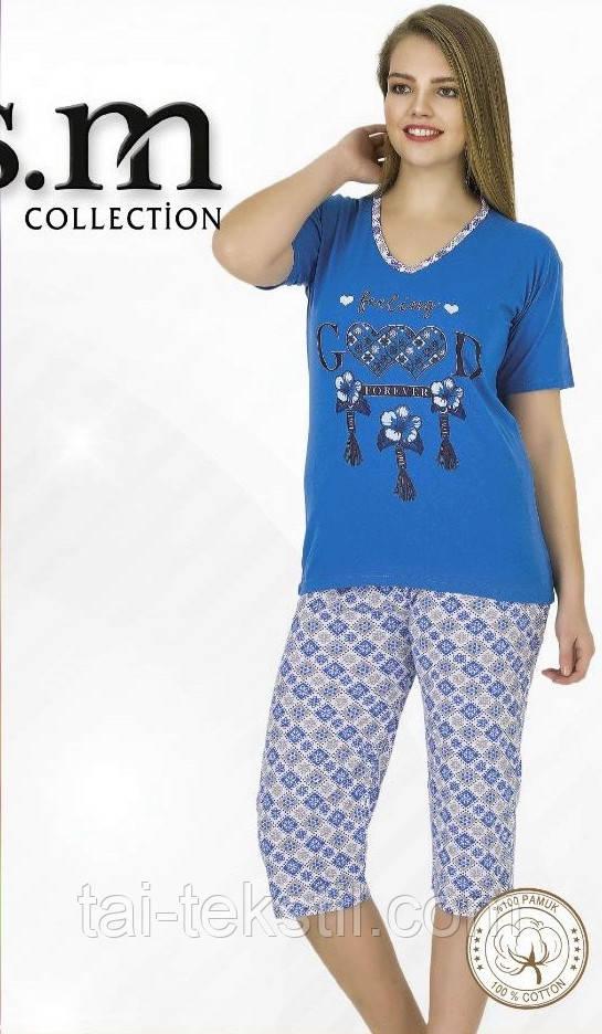 Пижама футболка с бриджами Турция хлопок разные цвета и рисунки