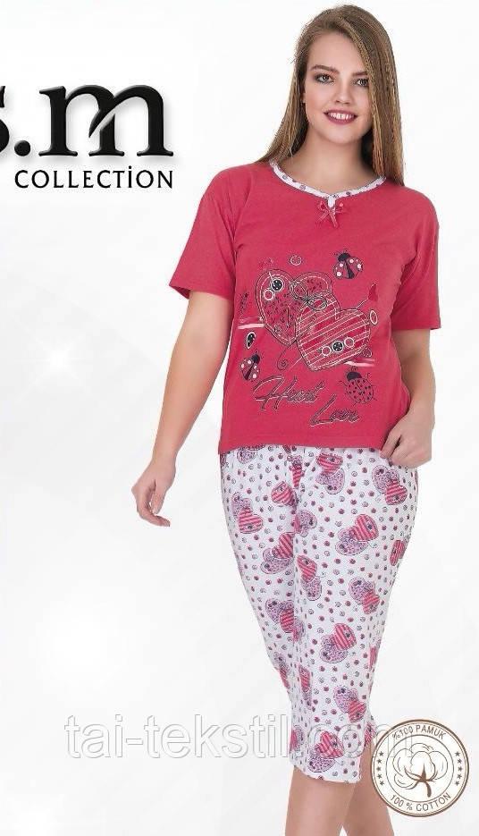Пижама футболка с бриджами хлопок разные цвета и накатки Турция