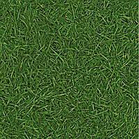 Бытовой линолеум IVC Bingo Style Grass 25