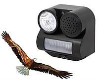 Звуковой отпугиватель птиц с датчиком движения OD 12