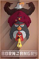 "Постер / Плакат ""Angry Birds (Born to be Angry)"""