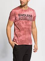 Мужская футболка Lc Waikiki / Лс Вайкики с надписью Endless Possibilities
