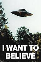 "Постер / Плакат ""The X-Files (I Want To Believe)"""