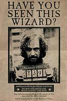 "Постер / Плакат ""Гарри Поттер (Wanted Sirius Black)"""