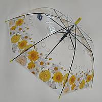 """Прозрачный зонт-трость с изображением ромашек, полуавтомат от фирмы """"Feeling rain"""" - 211-2"""