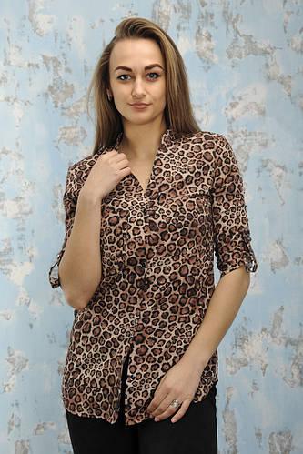 532e76083d8 Купить Блузы
