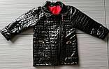 Демисезонная детская куртка Модница косуха, фото 4