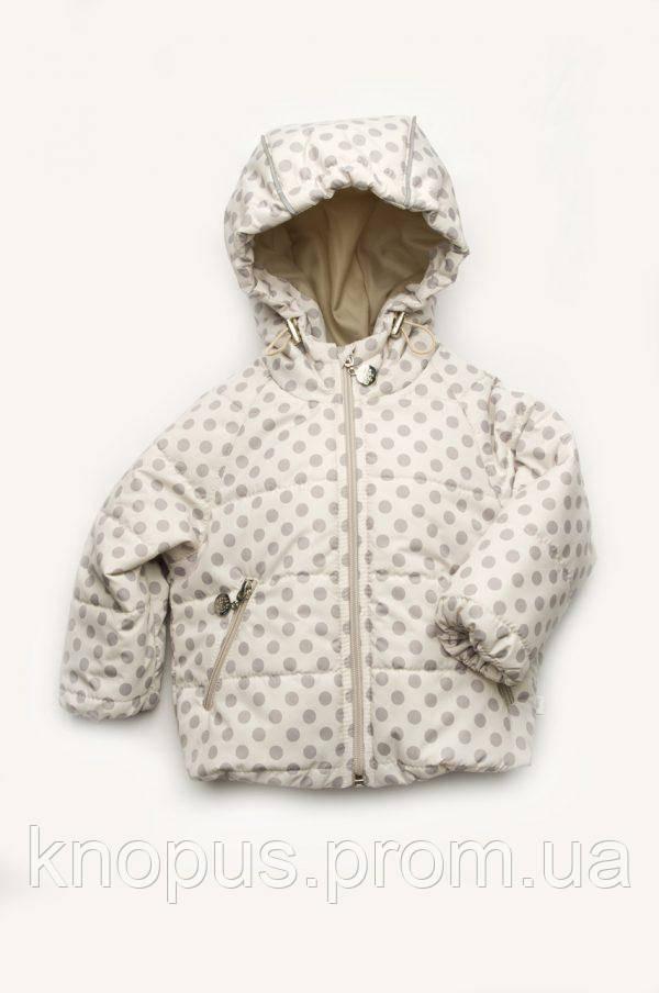 Курткая для маленькой девочки, светло-серая в горох (размер 68-86), Модный карапуз