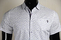 Рубашка мужская ANG 43050/43055 норма и батал лён