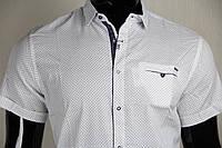 Рубашка мужская ANG 44640/44645 норма и батал лён