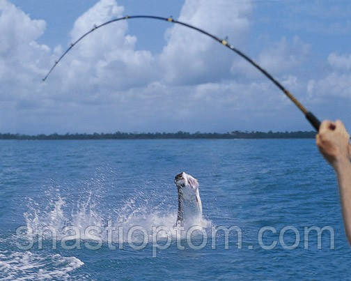 Рыбная ловля  17,  18 и 19 апреля.