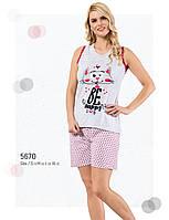 Пижама женская летняя хлопок шорты - майка Fawn 5670