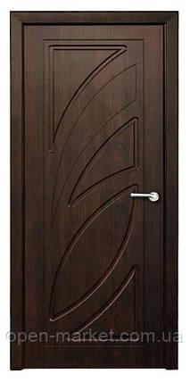 Модель Пальмира (тик) ПГ, межкомнатные двери, Николаев, фото 2