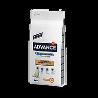 Advance Dog Labrador & Golden Retriever для лабрадоров и ретриверов (12 кг)