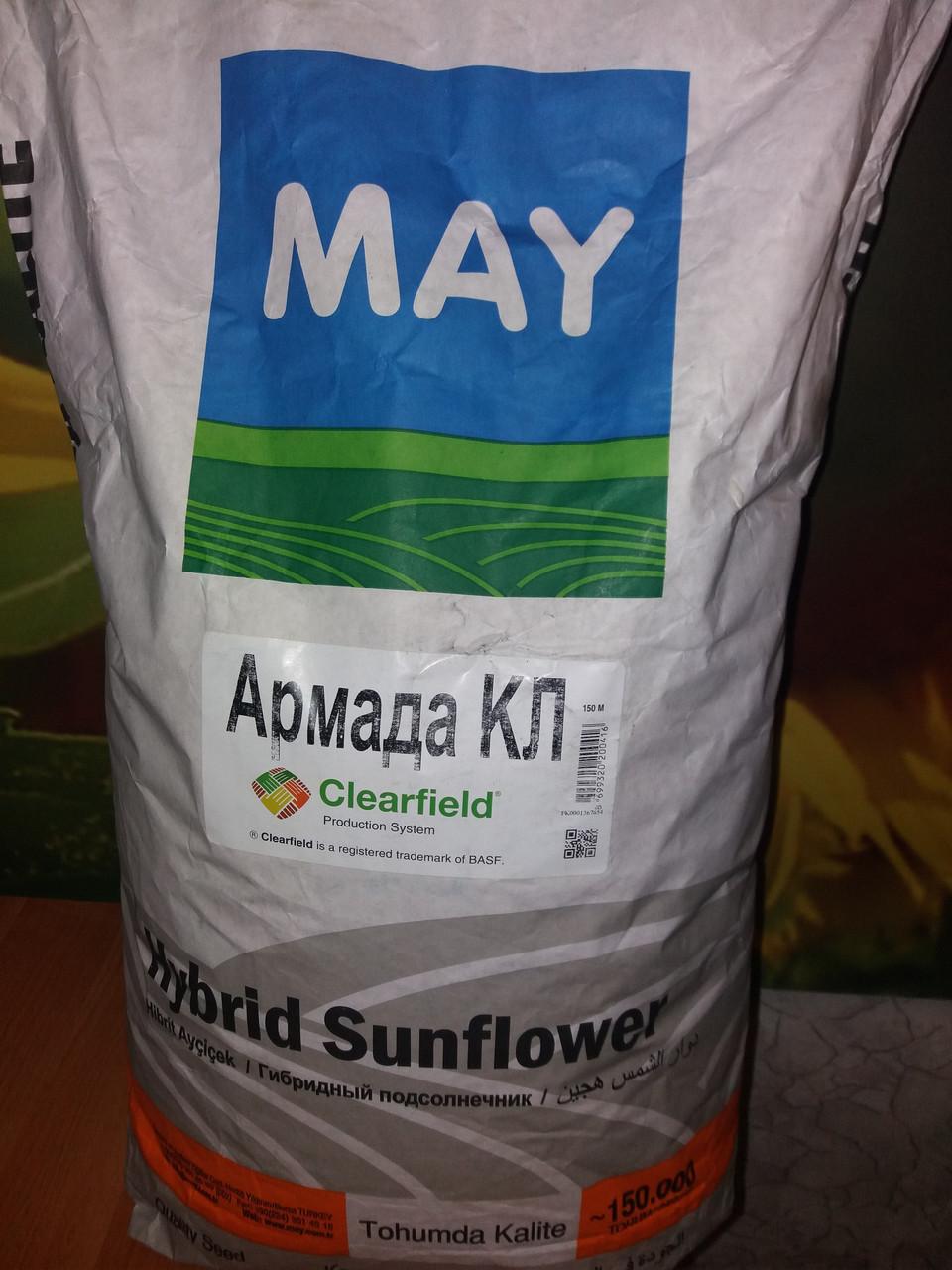 Семена подсолнечника АРМАДА КЛ (Clearfield)