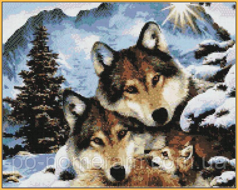 Картина из страз Babylon Семья волков (ST1023) 40 х 50 см (На подрамнике)