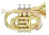 Труба Gewa Roy Benson PT-101
