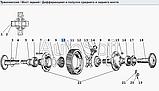 Циліндрична Шестерня ведена Z=47 4320-2402120, фото 3