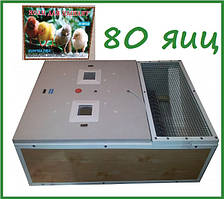 "Брудер + инкубатор ""Курочка Ряба"" на 80 яиц (аналоговый терморегулятор)"