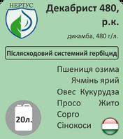 ДЕКАБРИСТ 480, РК (аналог Банвела) 5л-20л