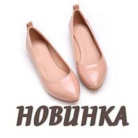 Поступление балеток