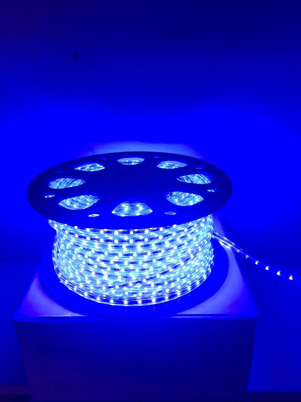 Светодиодная лента LED 3528-60 220V IP67 Синяя (СТАНДАРТ)