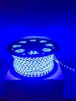 Светодиодная лента LED 3528-60 220V IP67 Синяя (СТАНДАРТ), фото 1