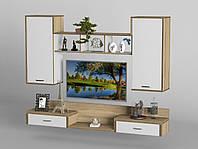 Мебель в гостиную - 214, фото 1