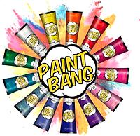 Nouvelle PaintBang. Крем-фарба для волосся (13 відтінків)