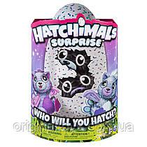 Интерактивная игрушка Hatchimals Surprise Peacat Двойной сюрприз в яйце Близнецы Котята Spin Master