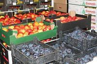 Камера охлаждения и хранения фруктов