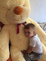 Большой плюшевый медведь 200 см: кремовый