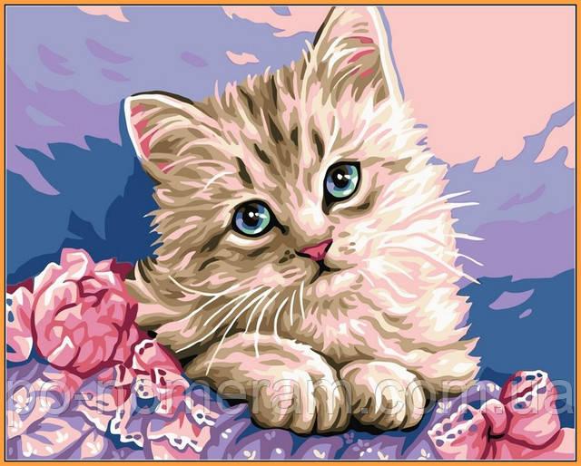 Babylon Premium раскраска милый котик купить