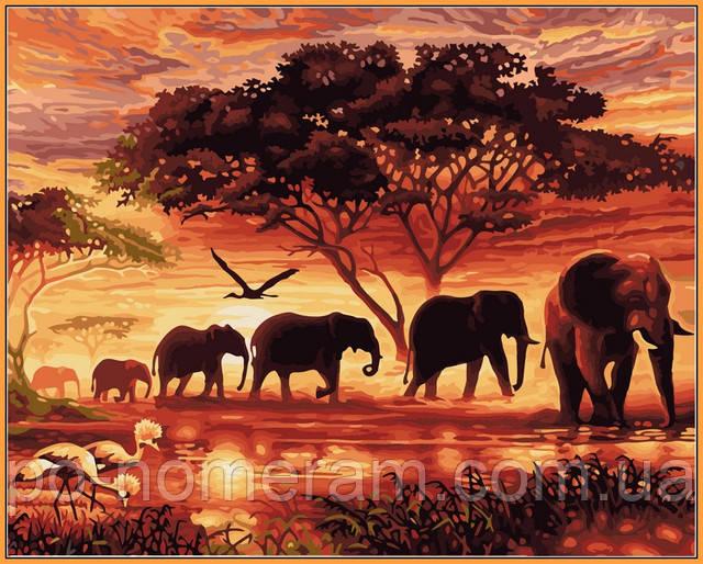 Babylon Premium раскраска слоны Саванна