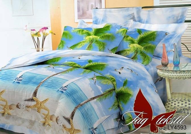 Комплект постельного белья BR4593, фото 2