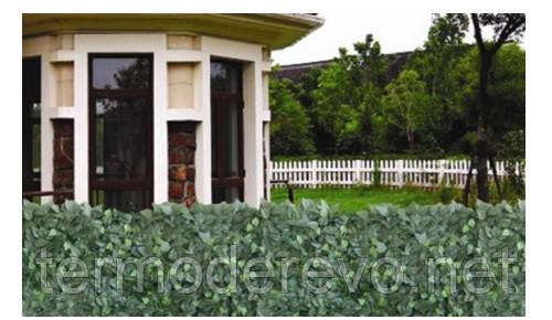 Декоративная зеленая изгородь «Молодая листва»