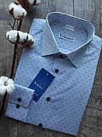 Рубашка мужская полуприталенная в голубую полоску