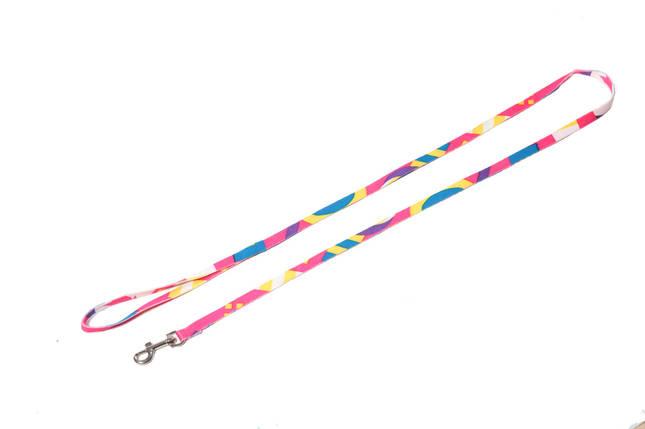 Поводок для собаки ленточный нейлоновый, радуга, фото 2