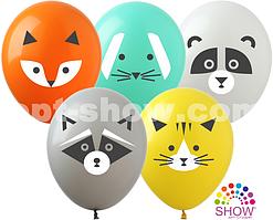 """Воздушные шары """"Зверюшки"""" группа-6"""" 12""""(30 см) Пастель Ассорти В упак: 100шт ТМ Арт «SHOW»"""
